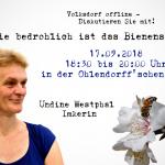 Volksdorf offline: Wie bedrohlich ist das Bienensterben?