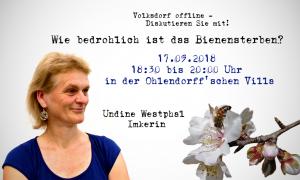 Volksdorf offline: Wie bedrohlich ist das Bienensterben? @ Ohlendorffsche Villa